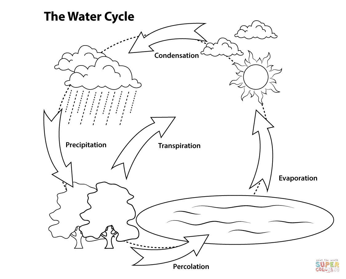 simple water cycle coloring page free printable coloring pages Interactive Water Cycle Diagram USGS