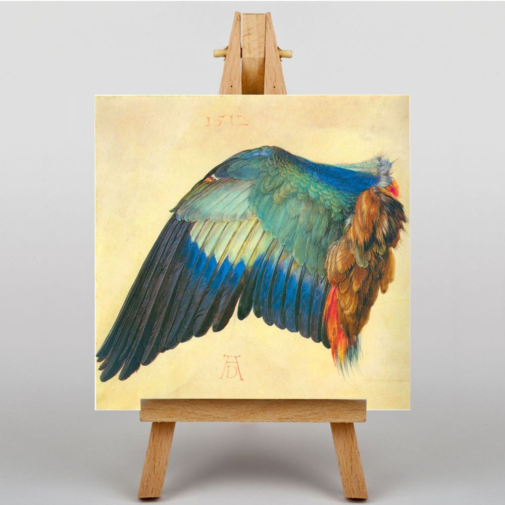 LARGE WALL ART 20x20 Inch - Albrecht Durer Wing of a Blaurake | Old ...