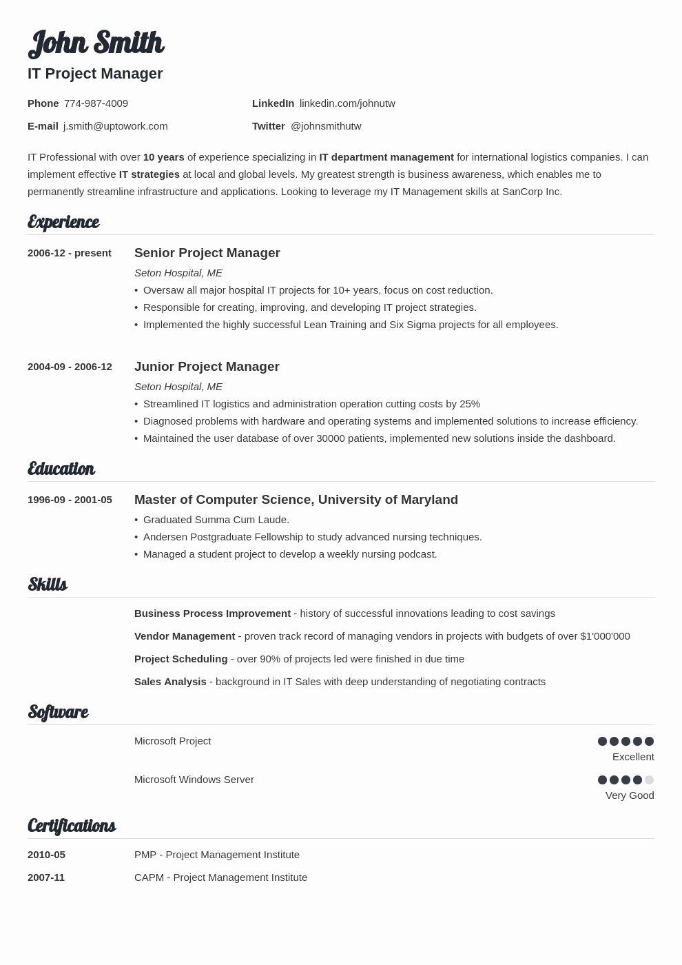 Minimalistic executive resume Word design professional