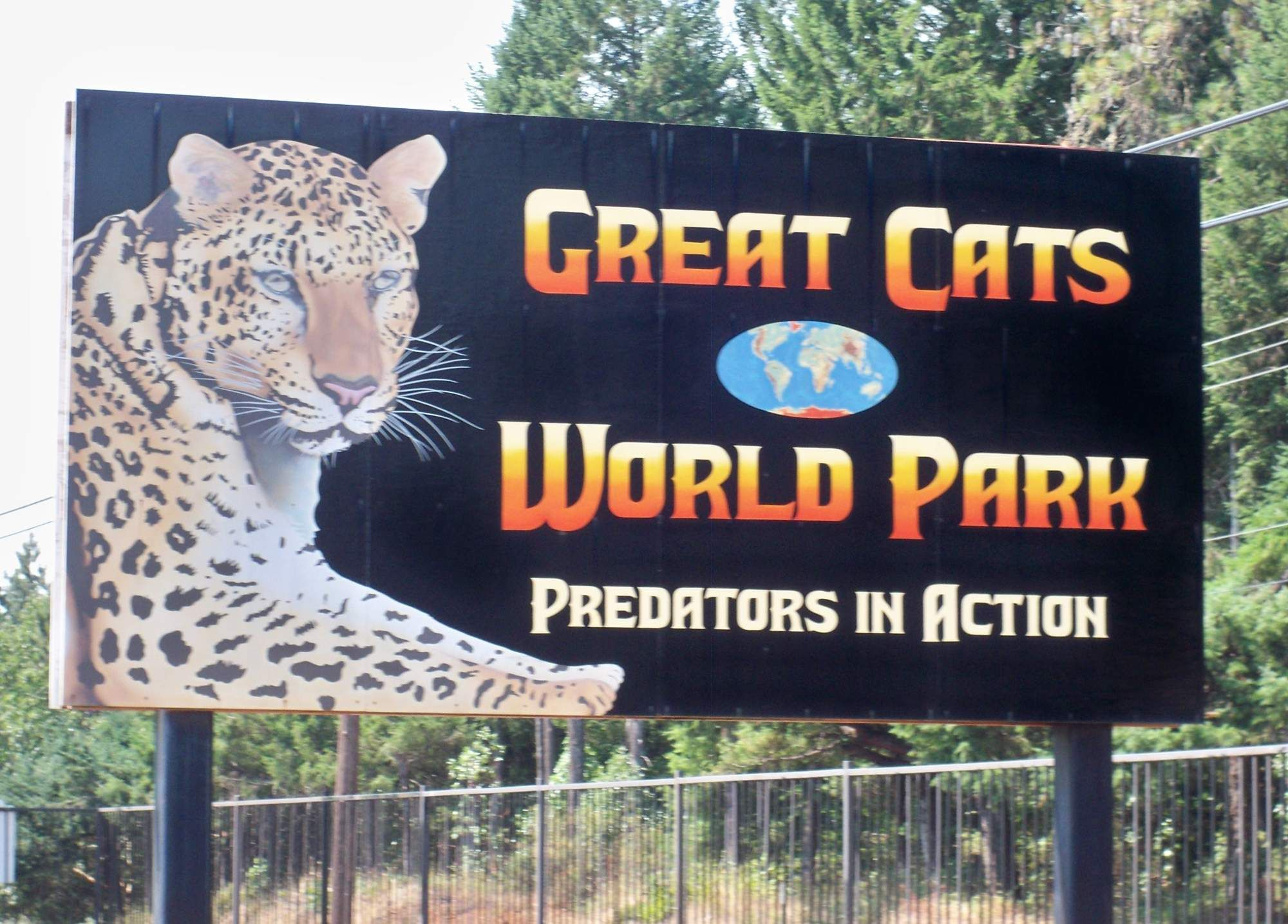Tiger breaks keeper's arm at Cave Junction Great Cats of the World owned by Craig Wagner