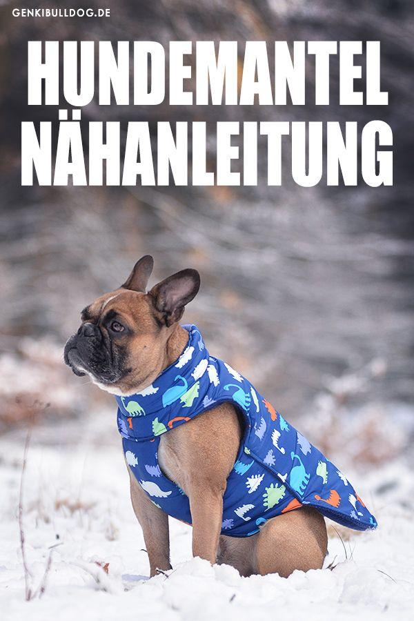 Anleitung: Hundemantel selbst nähen | Pinterest | Nähanleitung ...