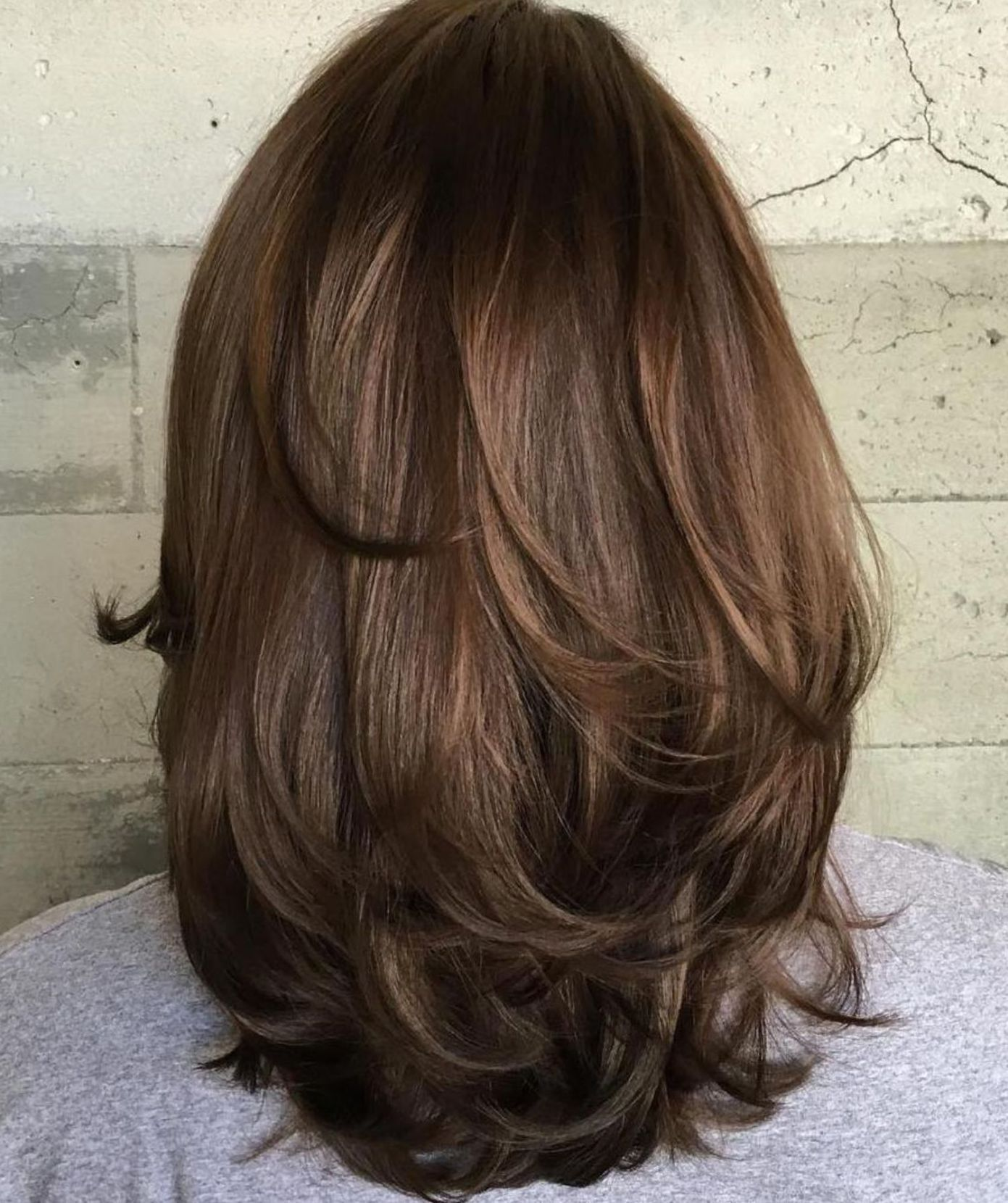 Back View Shoulder Length Layered Haircuts For Thick Hair 10