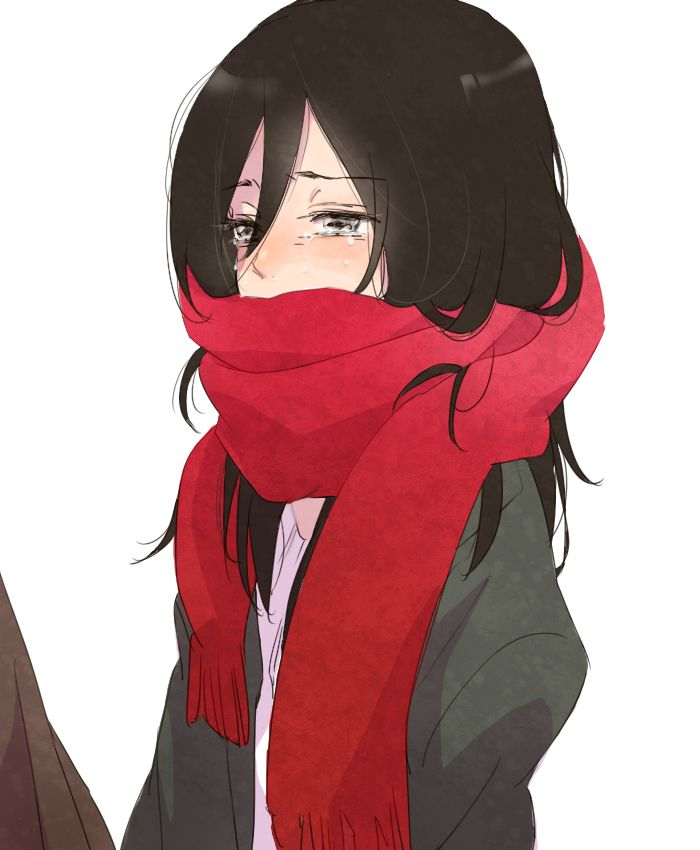 Anime Shingeki No Kyojin Attack On Titan Snk Art Cry
