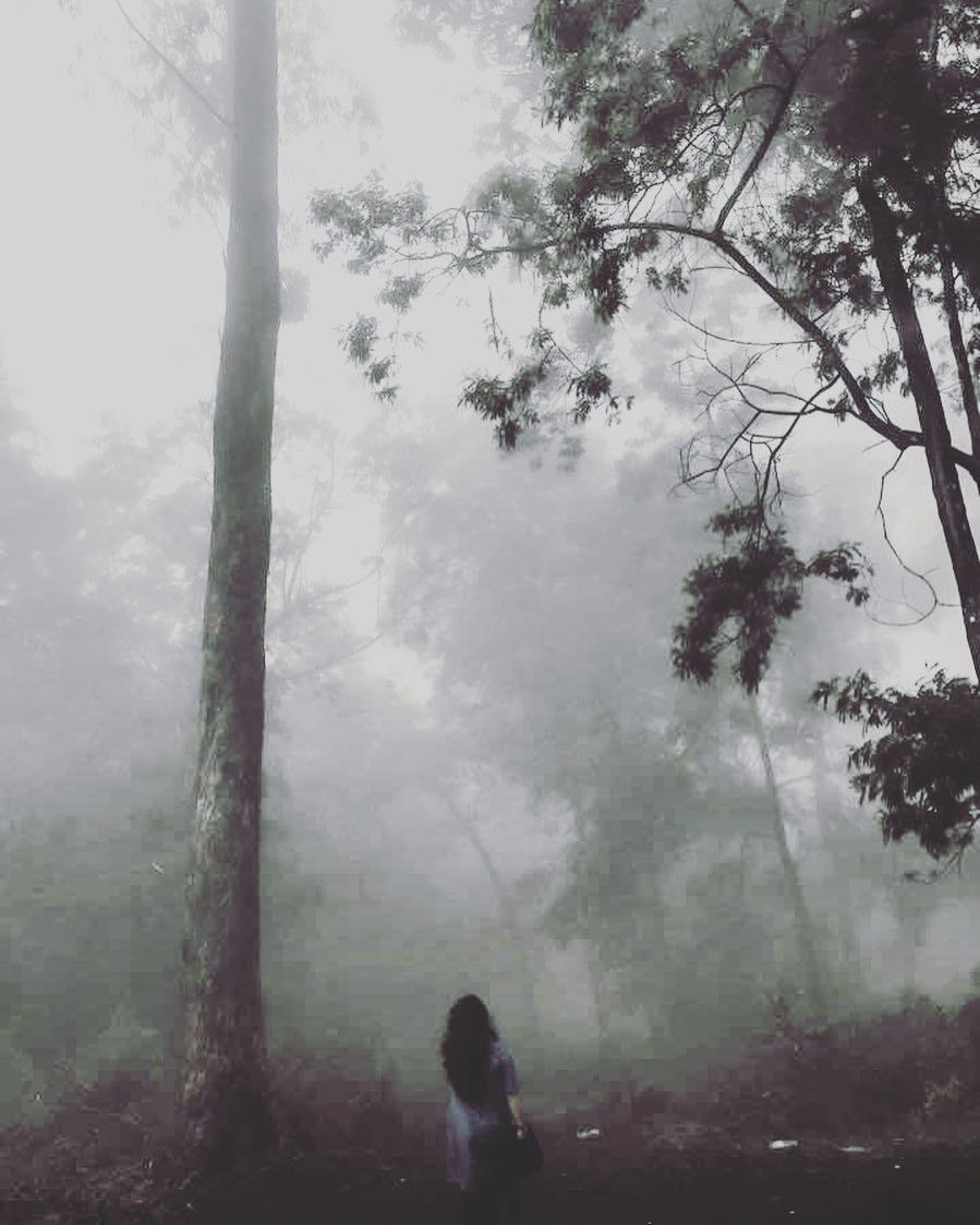 """""""The woods are lovely dark and deep. But I have miles to go before I sleep miles to go before I sleep."""" #beautifulkodaikanal #iphone6plusphotography #inspiration by instaiphonegramgram Follow """"DIY iPhone 6/ 6S Plus Cases/ Covers/ Sleeves"""" board on @cutephonecases http://ift.tt/1kAxdjF to see more ways to add text add #Photography #Photographer #Photo #Photos #Picture #Pictures #Camera #Only #Pic #Pics to #iPhone6SPlus Case/ Cover/ Sleeve"""