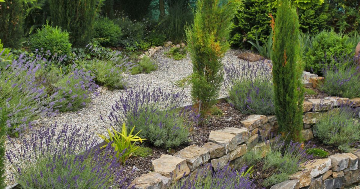 Mediterraner Garten, Garten Und