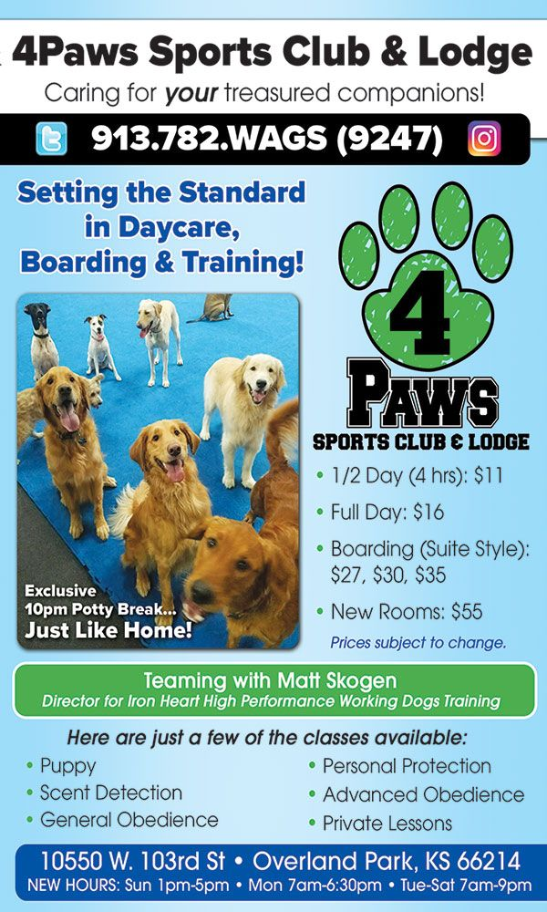 4Paws Sports Club & Lodge is a beacon of fun for your 4
