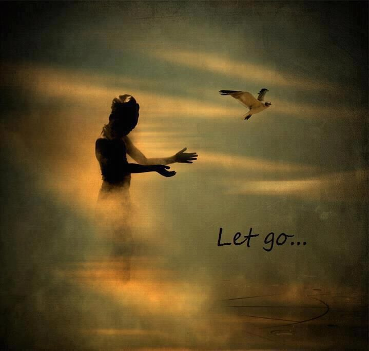 Let go.  Let go the need for judgement. Let go the need for fear. Let go the need for worry, for doubt, for anxiety. In truth....YOU are all you need.