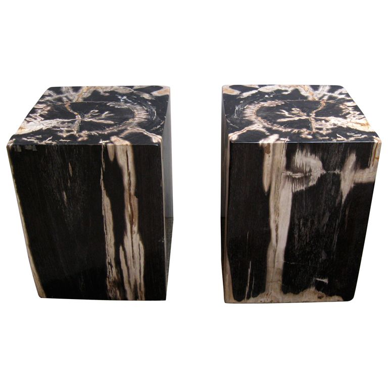 View This Item And Discover Similar Stools For Sale At   Unusual Pair Of  Cut And Polished Petrified Wood Side Tables/ Stools. Where Most Petrified  Wood ...