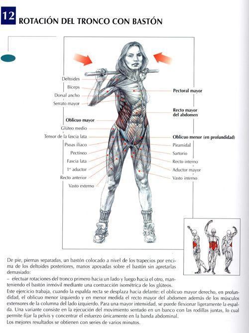 tipos de ejercicios con pesas mas cardio no es la solucion