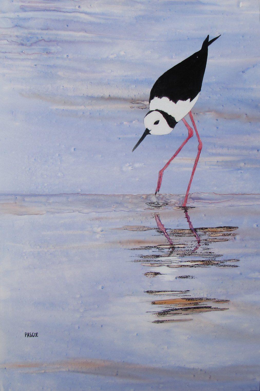 Blackwinged stilt, Weipa Pen & Watercolour on Yupo, 26