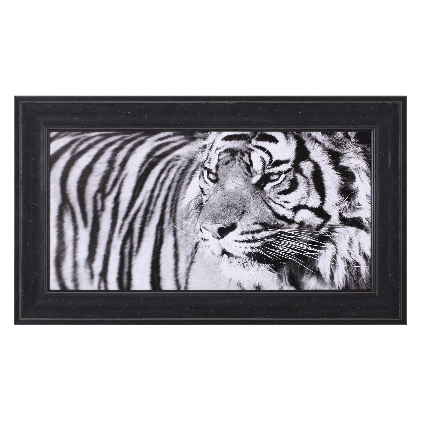 Art effects tiger eyes framed wall art