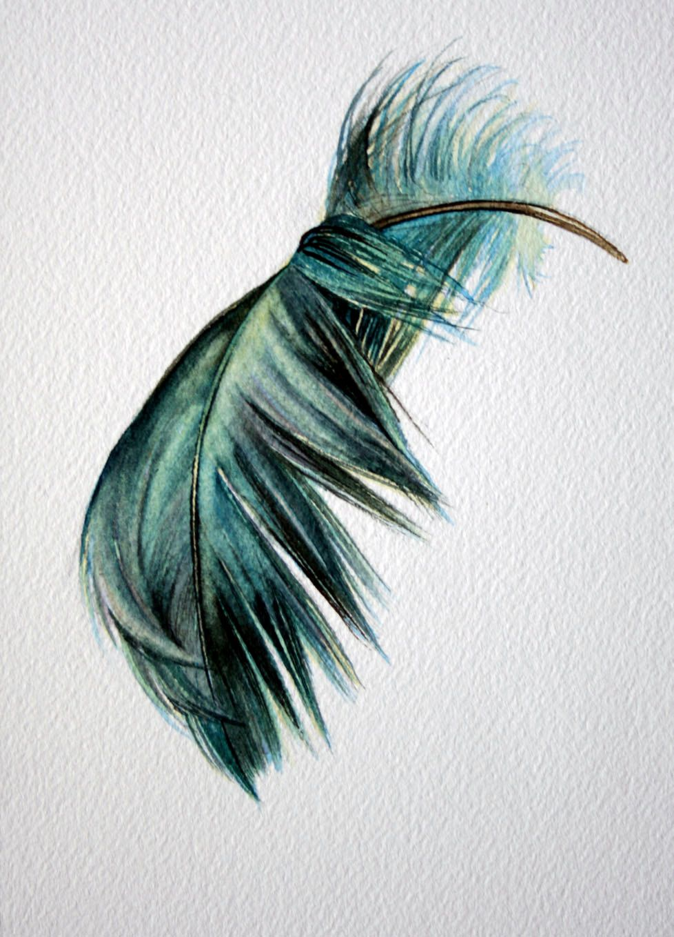 Blue Green Floating Bent Feather Original Watercolor Picture