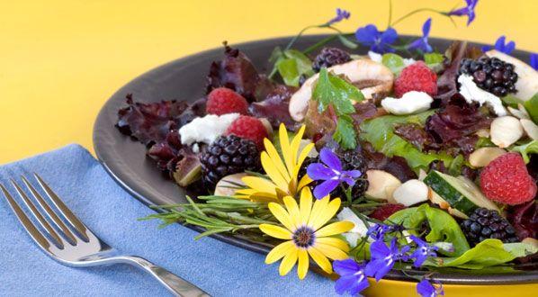 essbare bl ten sind hingucker und bringen aroma essbare bl ten pinterest kr uter salat. Black Bedroom Furniture Sets. Home Design Ideas
