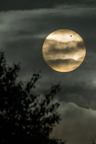 Transet Of Venus - Orebro, Sweden