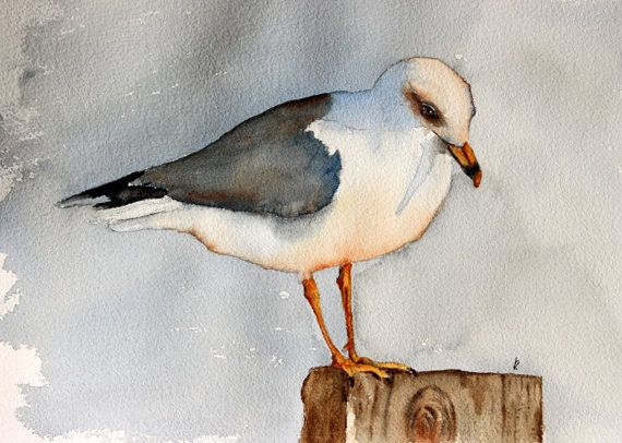 Aquarelle Oiseaux Peinture Oiseau Art Seagull Par Bmoorearts Art
