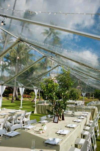 Rain Tarp For Wedding
