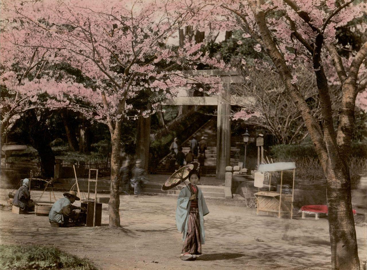 "songesoleil:  ""Uyeno Tokio"" Studio Shin-e-Do (Kobe, Japan) Photography. 19th century."