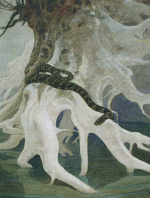 An early 1900s Charles Bull watercolor of a snake (from the Library of Congress)