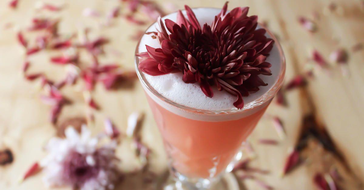 Grapefruit tequila sour recipe vinepair vinepair