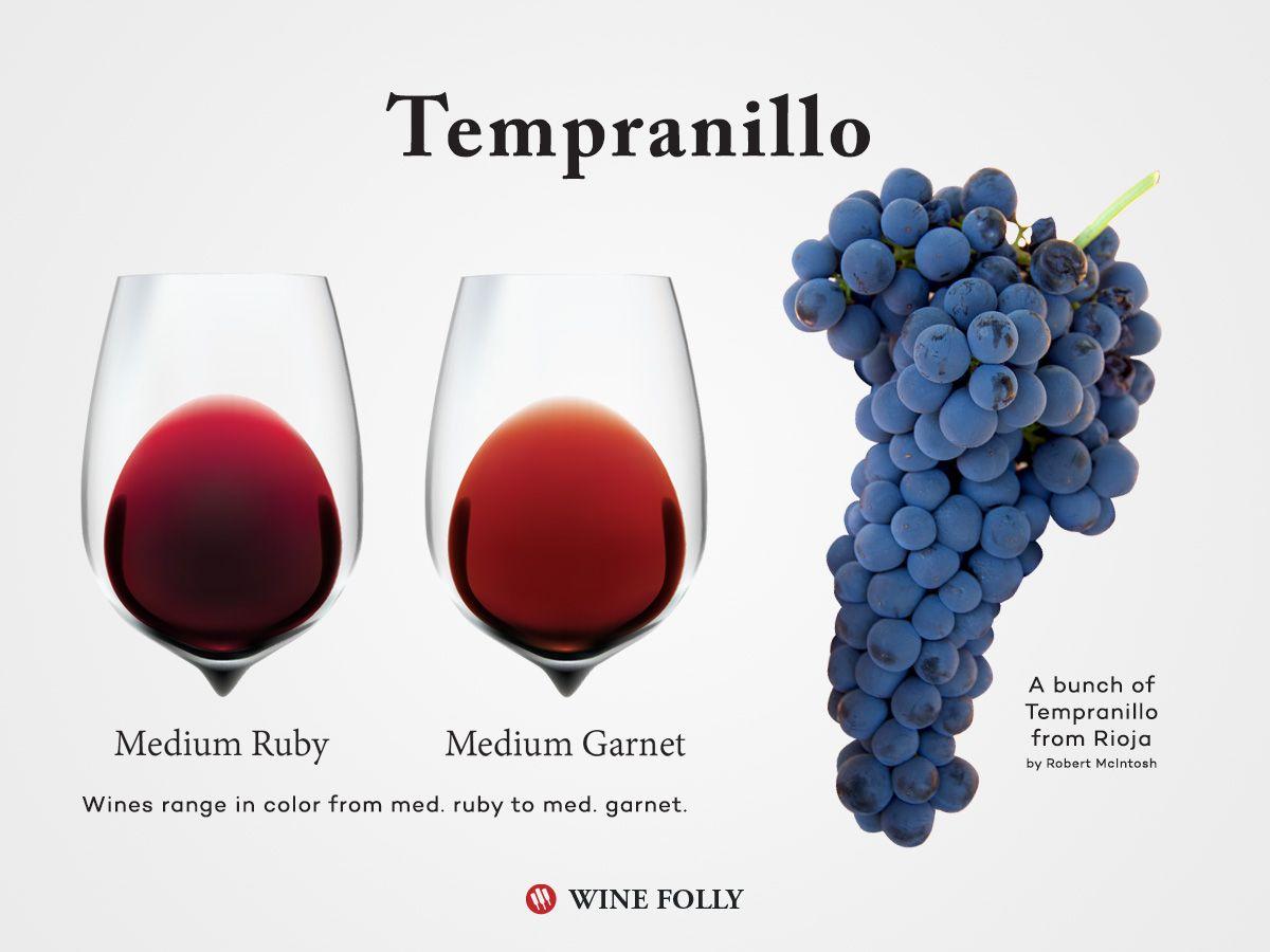 Tempranillo: Wine Profile (con imágenes) | Cata de vinos, Tipos de ...