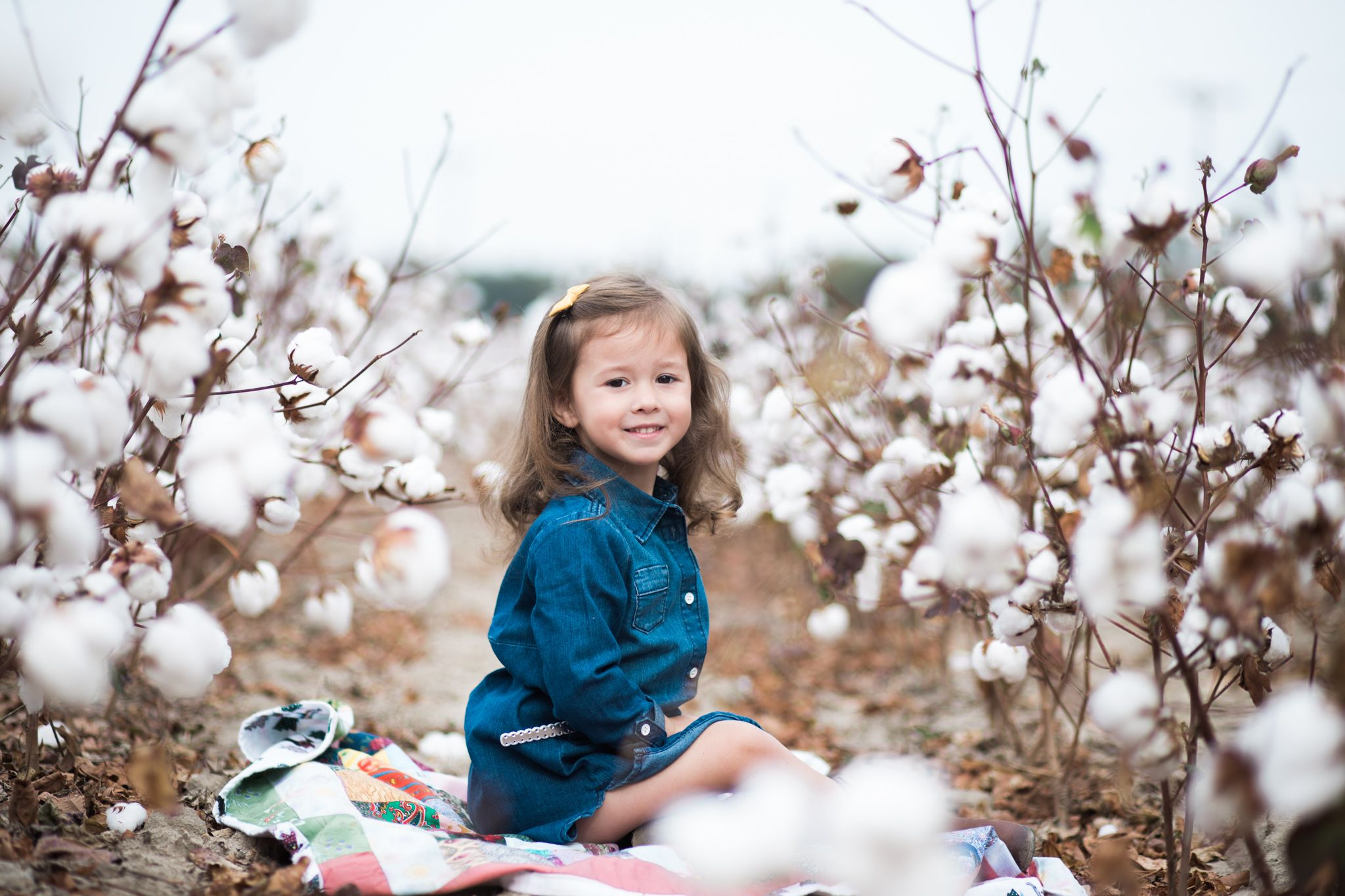 Cotton Field Pictures Ciara Connor Photography Toddler Kids