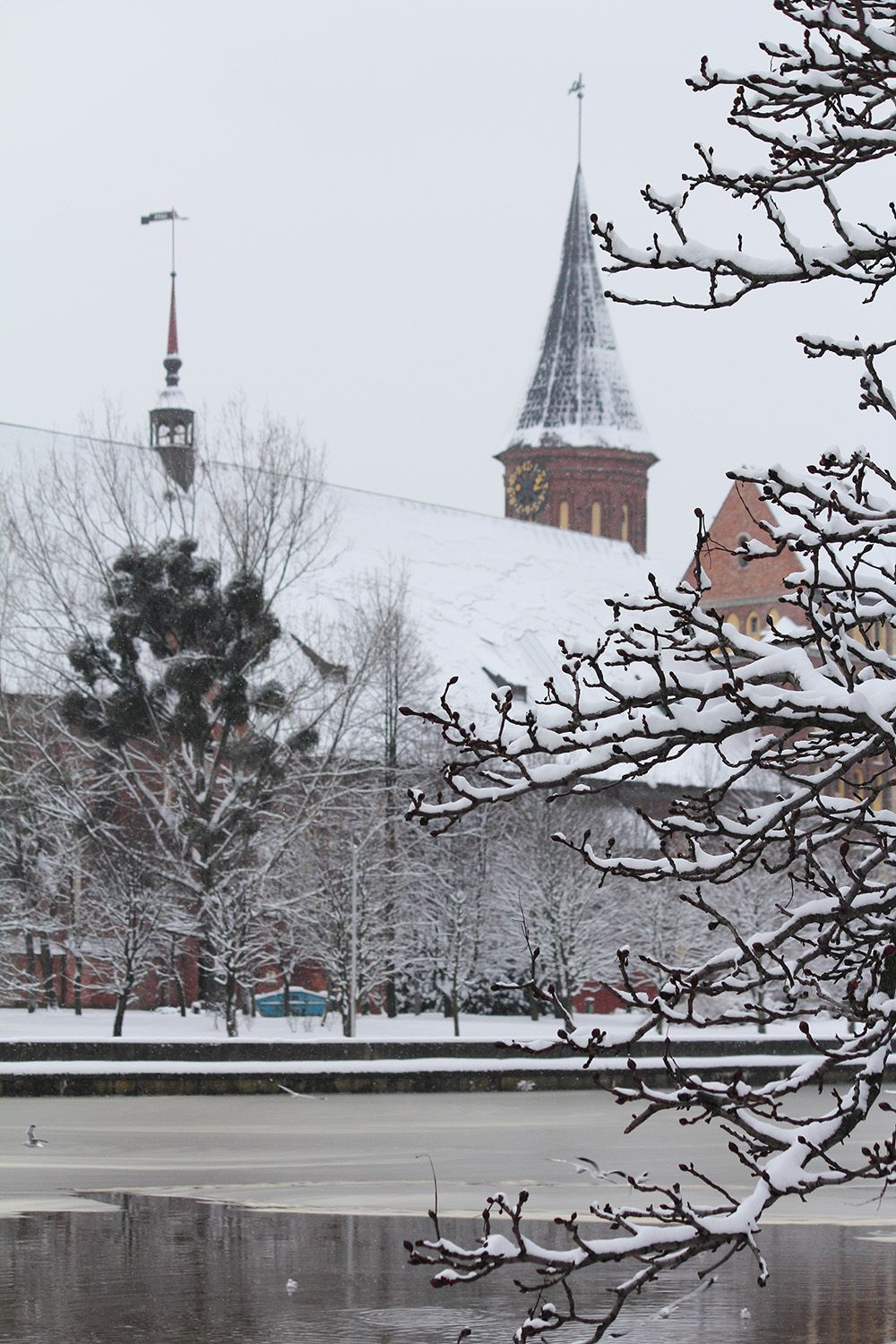 Königsberg im Winter