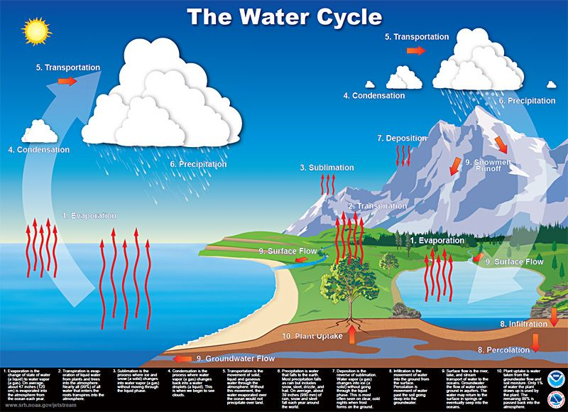 48 best images about Water Cycle Lessons on Pinterest | Water ...