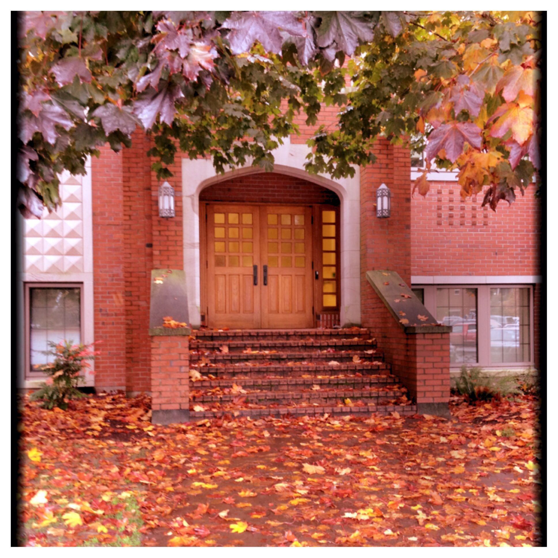 Fall at university of puget sound with images puget