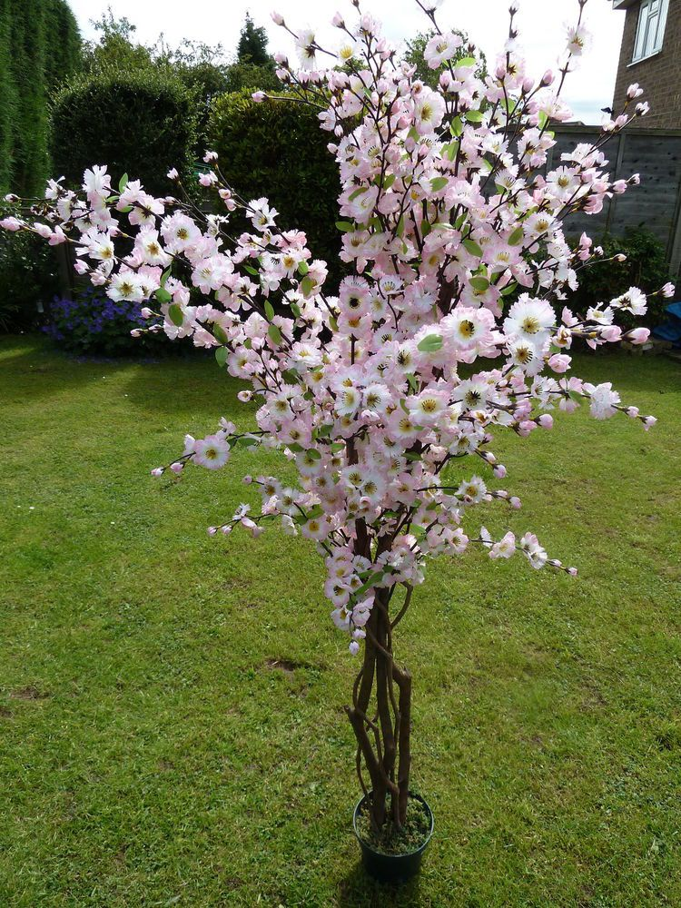 Large Artificial Pink Blossom Tree In A Pot 5ft 1 7m Indoor Outdoor Tree Plant Artificial Cherry Blossom Tree Blossom Trees Pink Blossom Tree