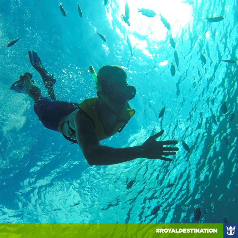 #royaldestination Momentos como este e muito mais você encontra em Cozumel, ilha localizada no Caribe mexicano. Vamos pra lá? Clique na imagem e reserve já o seu cruzeiro!