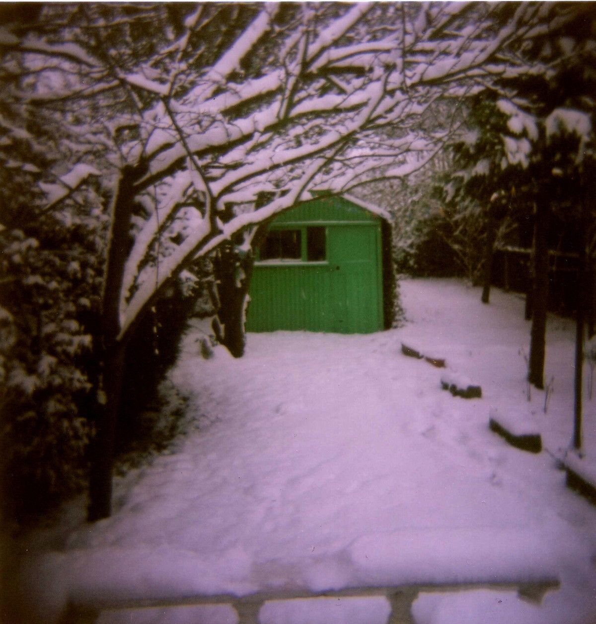 """A Submission for """"White Christmas Flash Rumble"""" - Lomography"""
