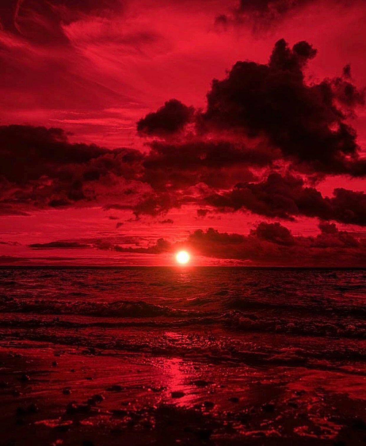 Pin by 🌹chlöebabyxöxö🌹 on *༺༶ ༚ i ️Red ༚ ༶༻*   Red ...