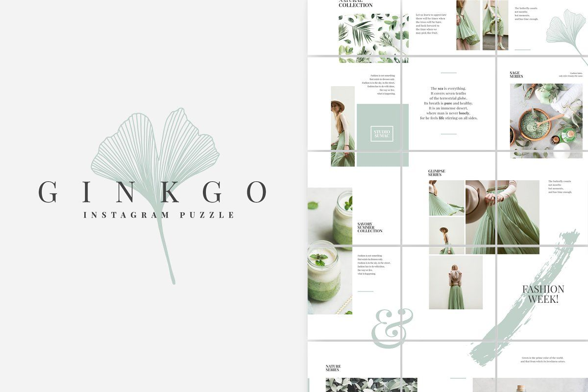 Ginkgo Instagram Puzzle Template by Studio Sumac on