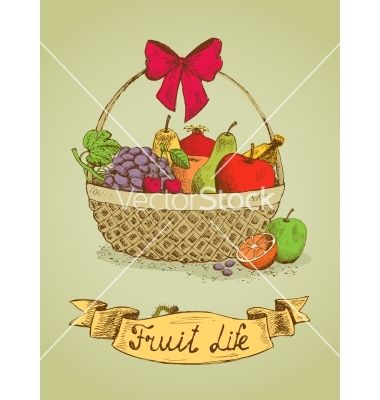 Fruit life gift basket with bow emblem vector - by macrovector on VectorStock®