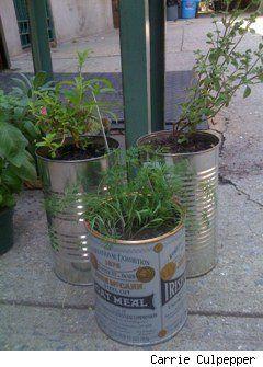 tin can - herbs - favor