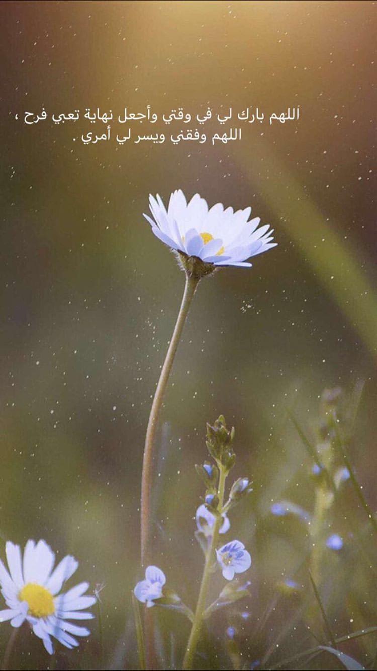 Pin By Souad Berbar On اسلاميات Flowers Photography Nature Photography Nature Photos