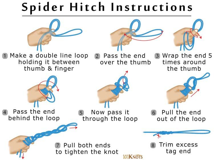 Instructions For Tying A Spider Hitch 101 Knots Fishing Knots
