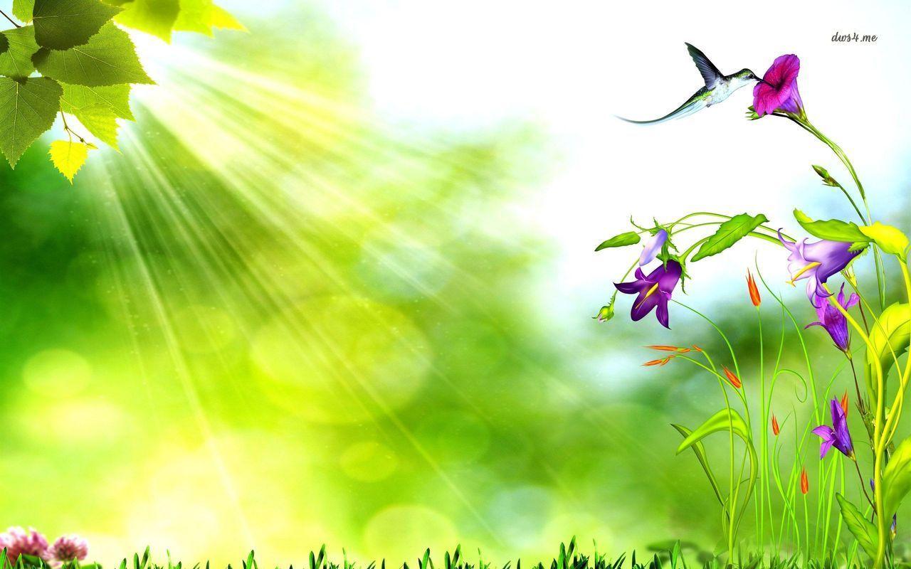 Bird Drinking Nektar From Flower Hd Wallpaper Beautiful Nature Wallpaper Hd Birds Drinking Beautiful Nature Wallpaper
