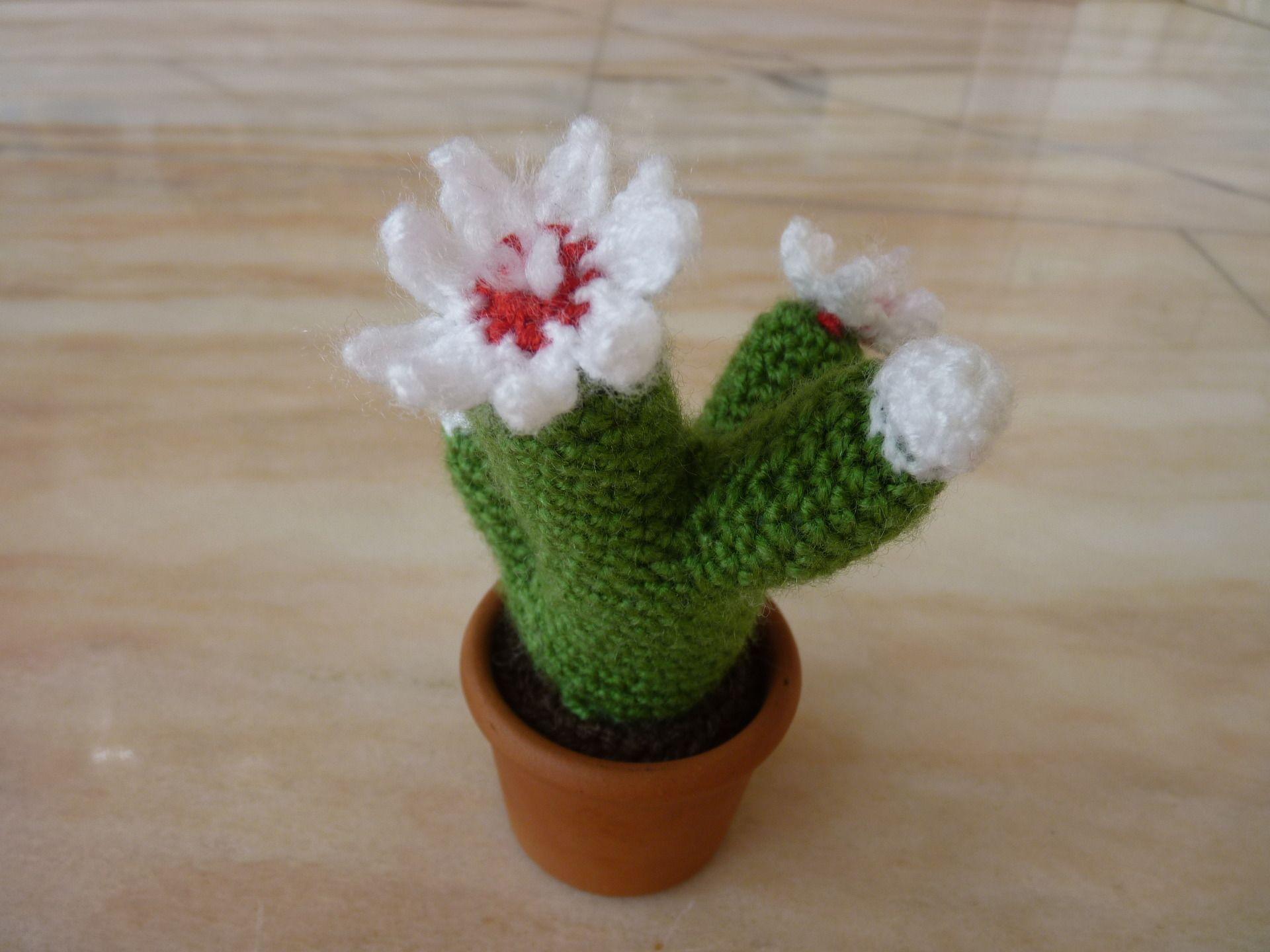 Amigurumi Cactus Crochet Pattern : Cactus au crochet fleurs blanches dans son pot en terre cuite