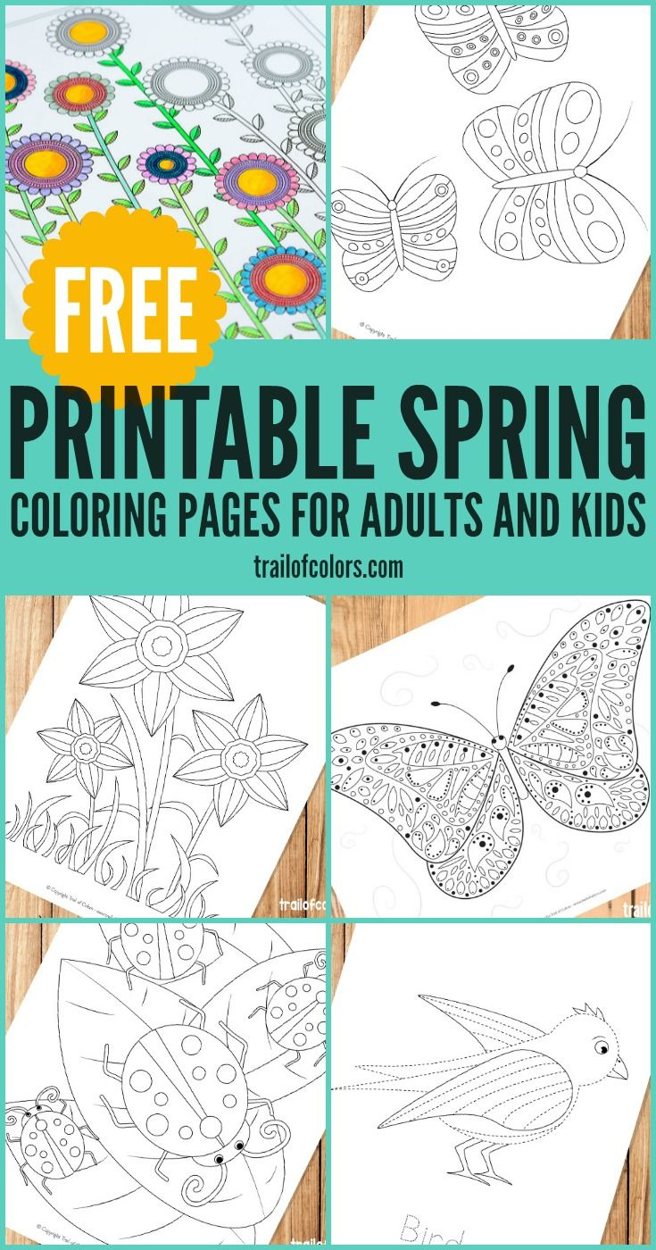 Spring Coloring Pages for Grown Ups and Kids | Pinterest | Spring ...