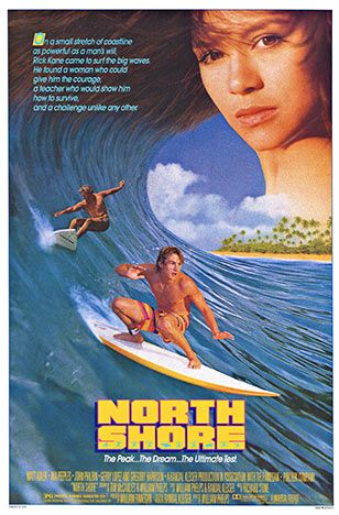 Original, 1987, NORTH SHORE surfing poster @ www.thevintageposter.com