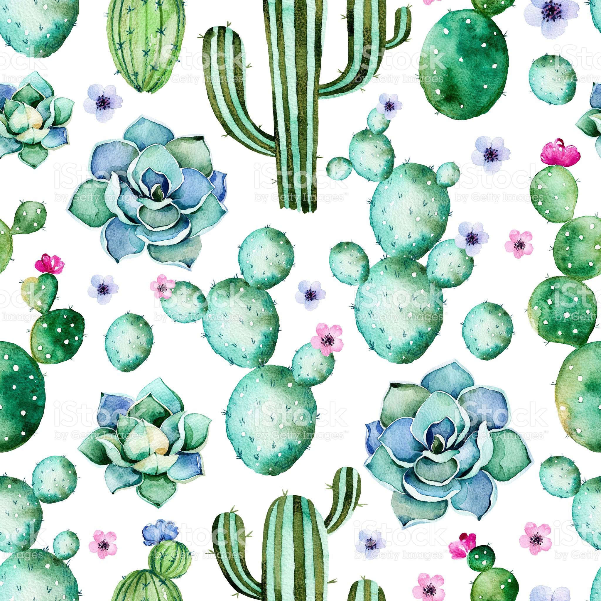 Seamless Pattern With High Quality Hand Painted Watercolor Cactus
