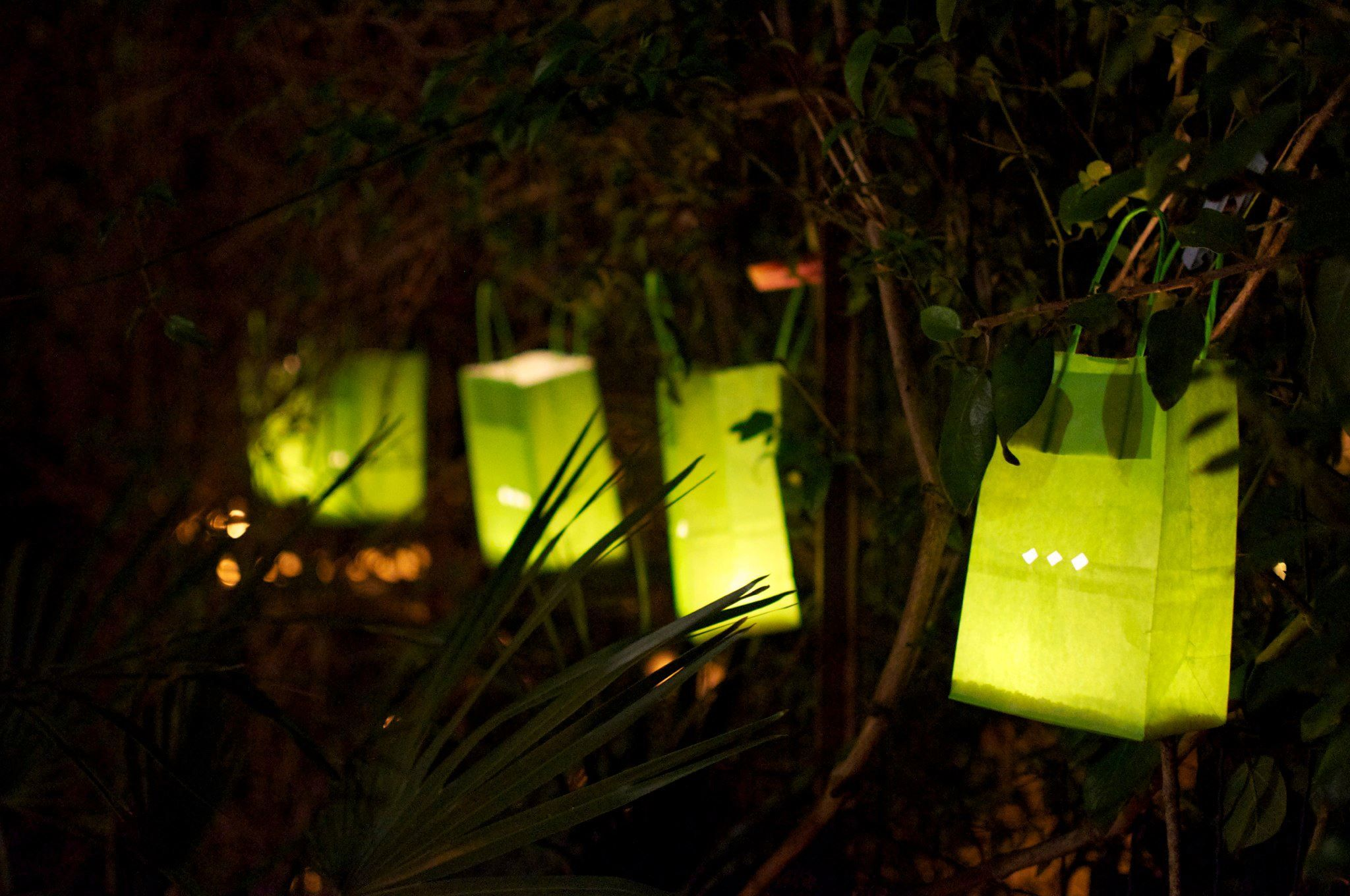 Mini light sets for crafts - Easy Garden Lights Mini Paper Gift Bags In Bright Green Fold In Half And