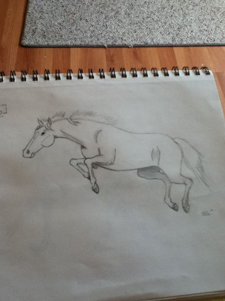 drawing of a horse named fury