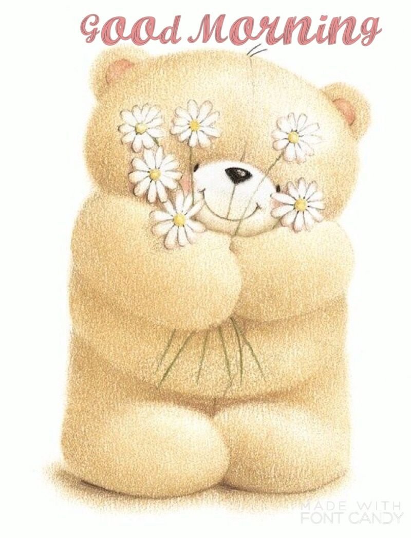 Good morning Forever friends | Teddy bear pictures, Bear