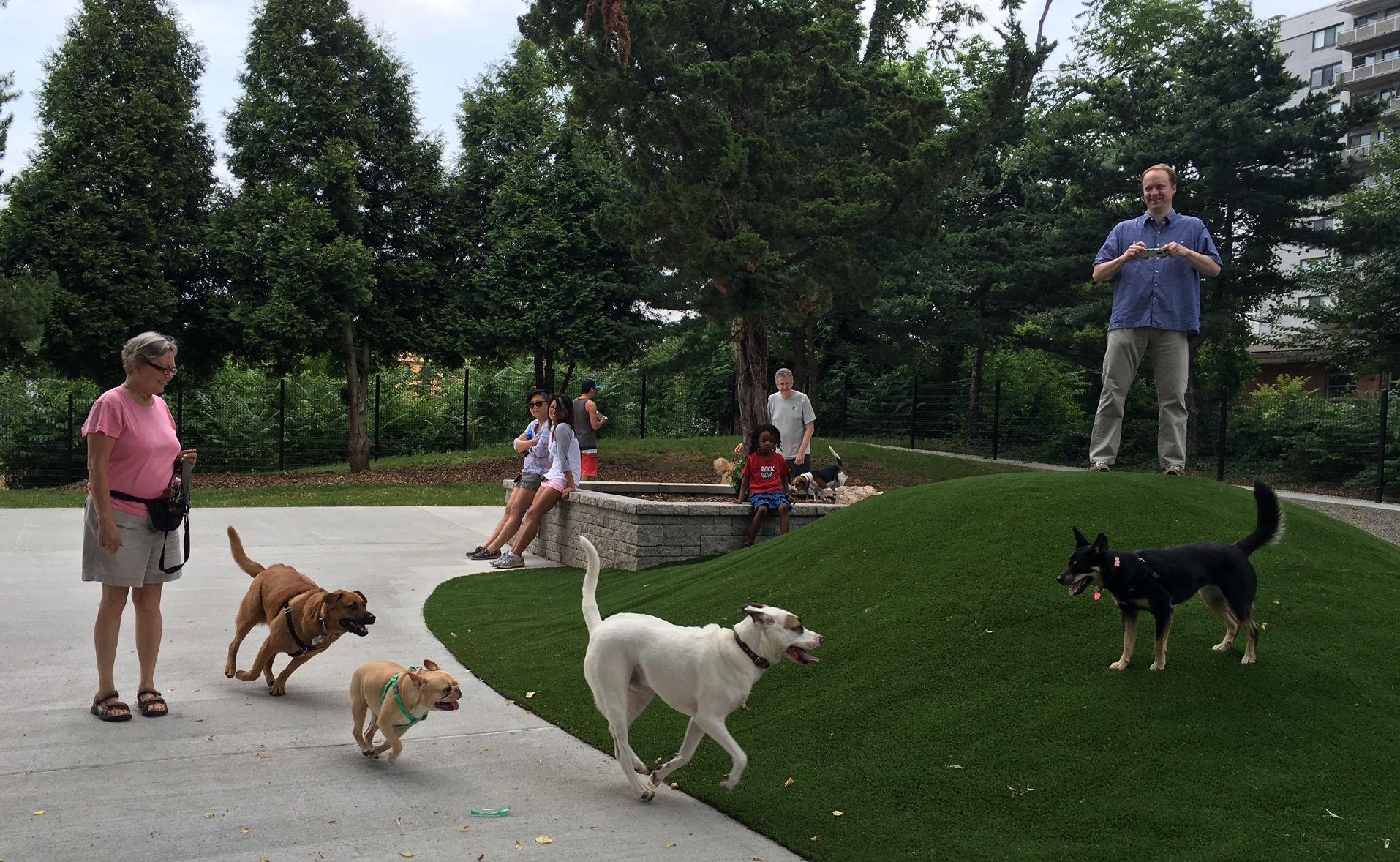 Ellsworth Urban Park Urban Dog Dog Park