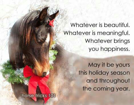 Merry Christmas To All! | Christmas horses, Merry christmas quotes, Horses
