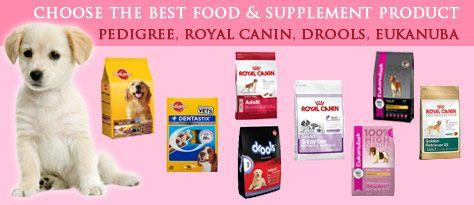 Buy Pet Food Pet Accessories Online From Petginie In Pet Shop In