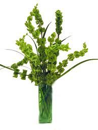 Bells of Ireland - a great lime green color! These would add height to the arrangement =) plus they would add an interesting touch to them!