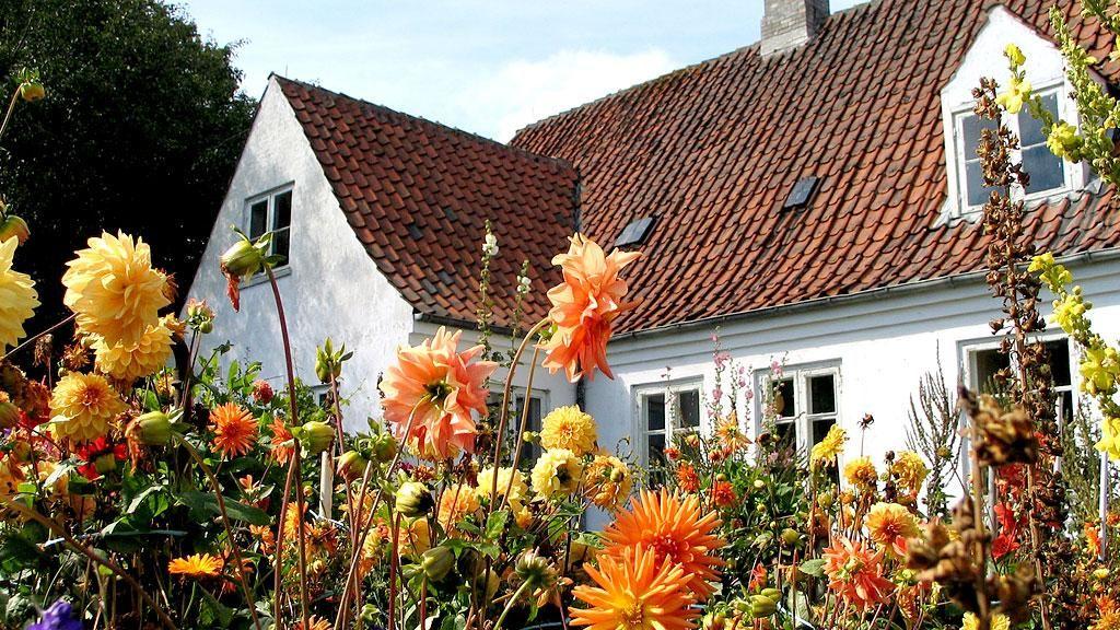 Malergården | Sigurd Swane | Agnete Swane | Gerda Swane | Henrik Swane | Familien Swane | Plejerup | Odsherred